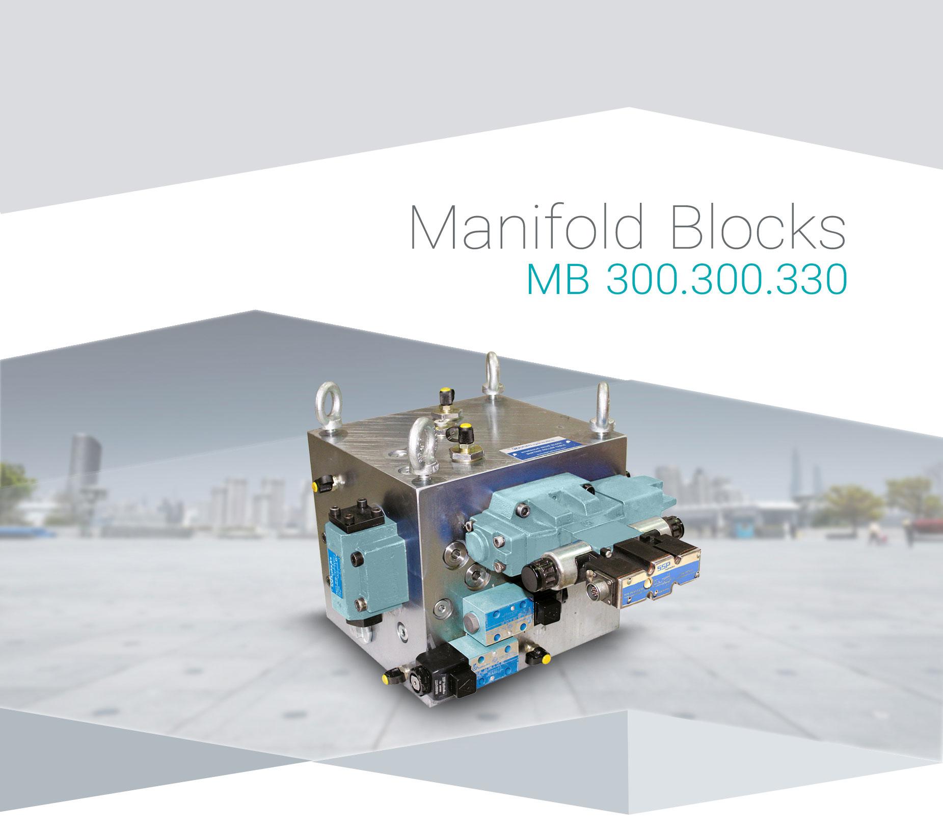 MB-300.300(1)