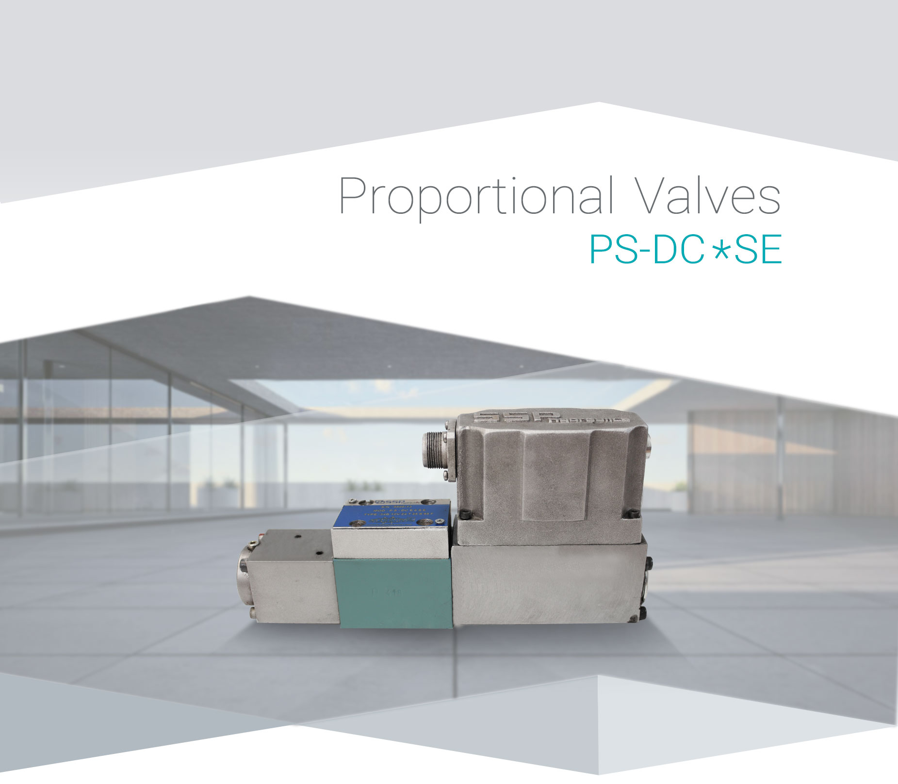 PS-DC6SE-(1)