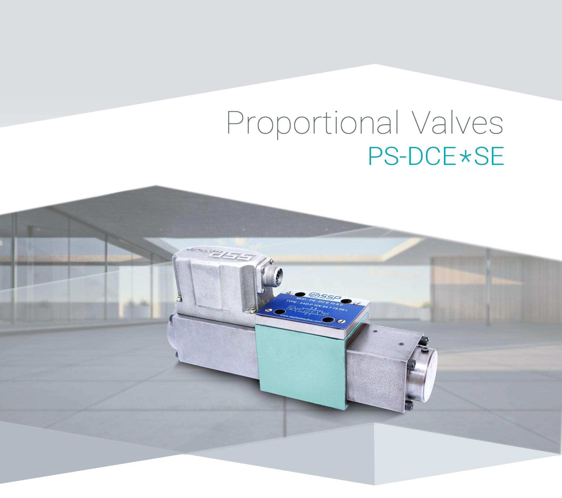 Ps-DCE10SE-(1)