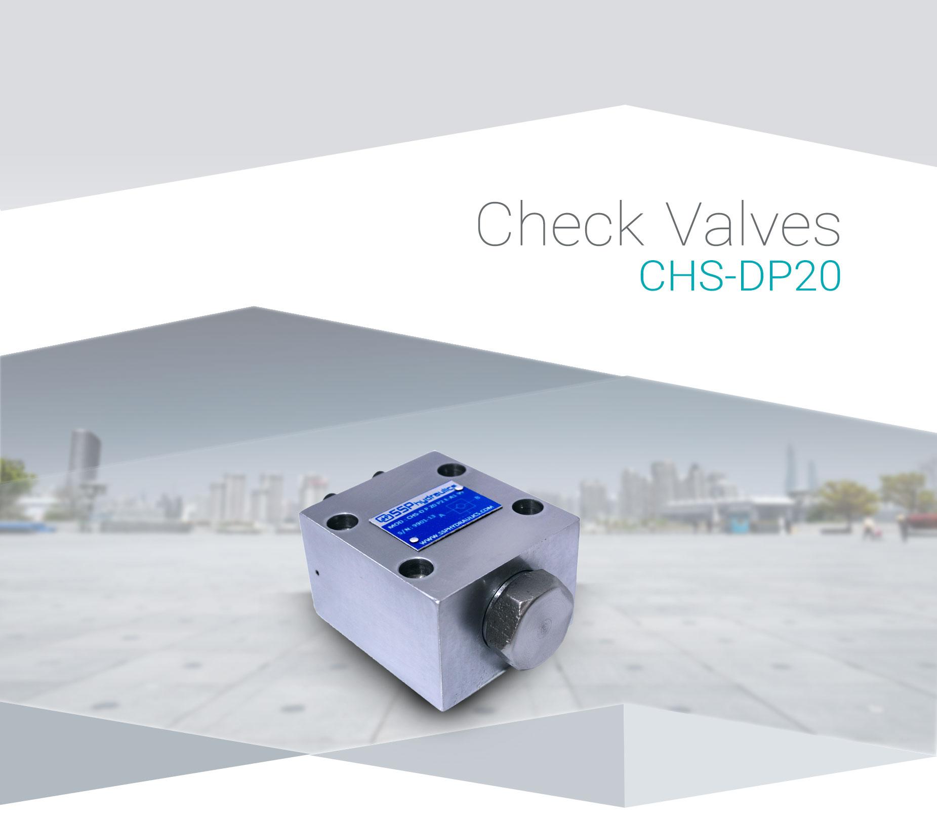 CHS-DP20-(1)