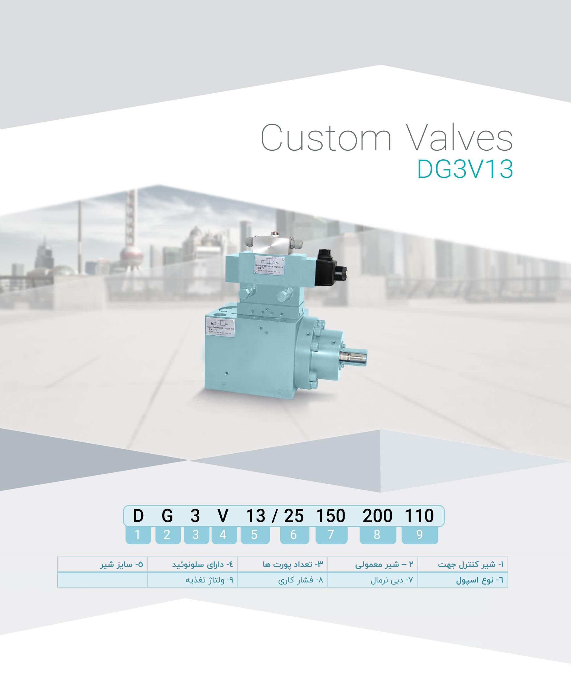 DG3V13(1)