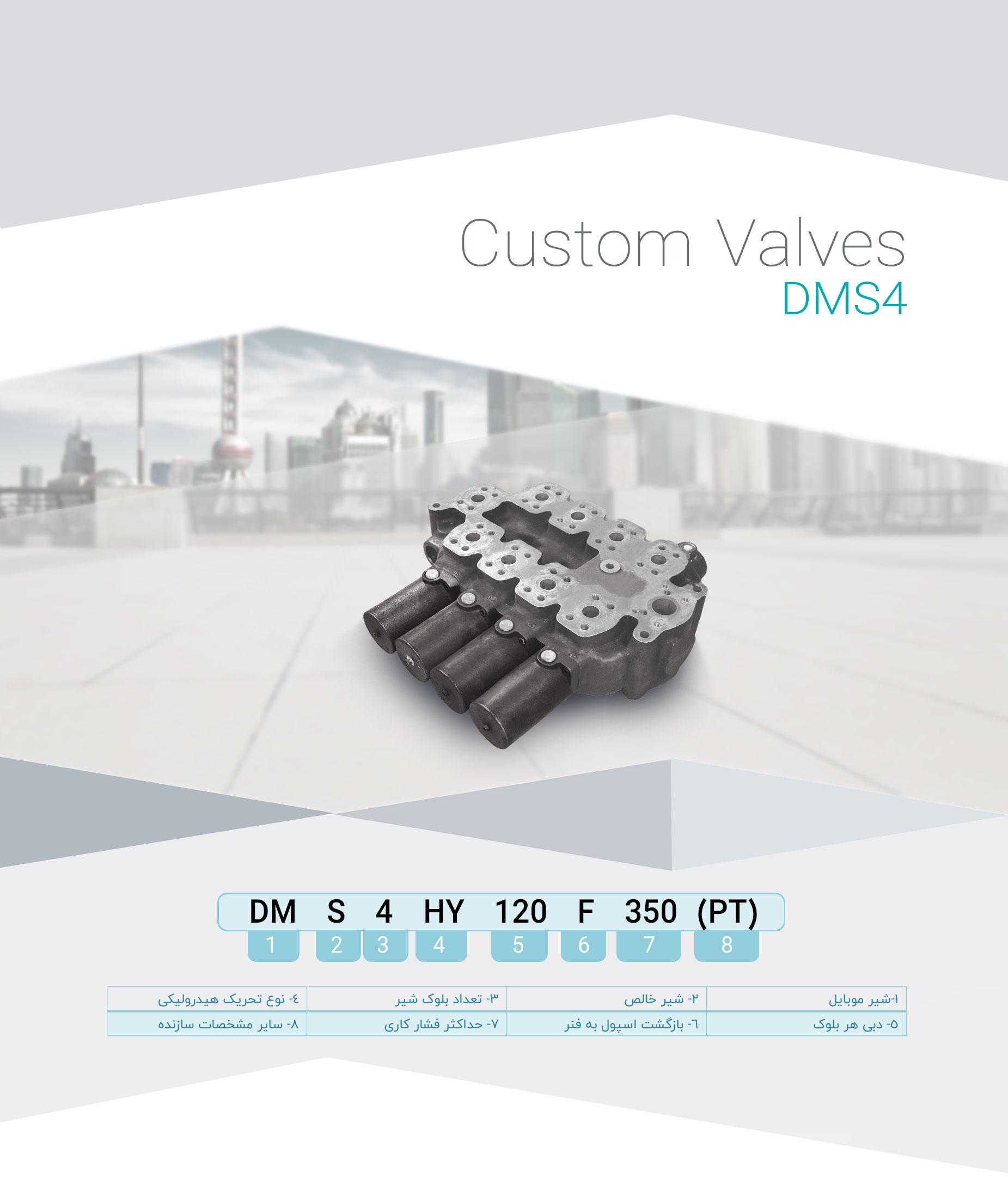 DMS4(1)