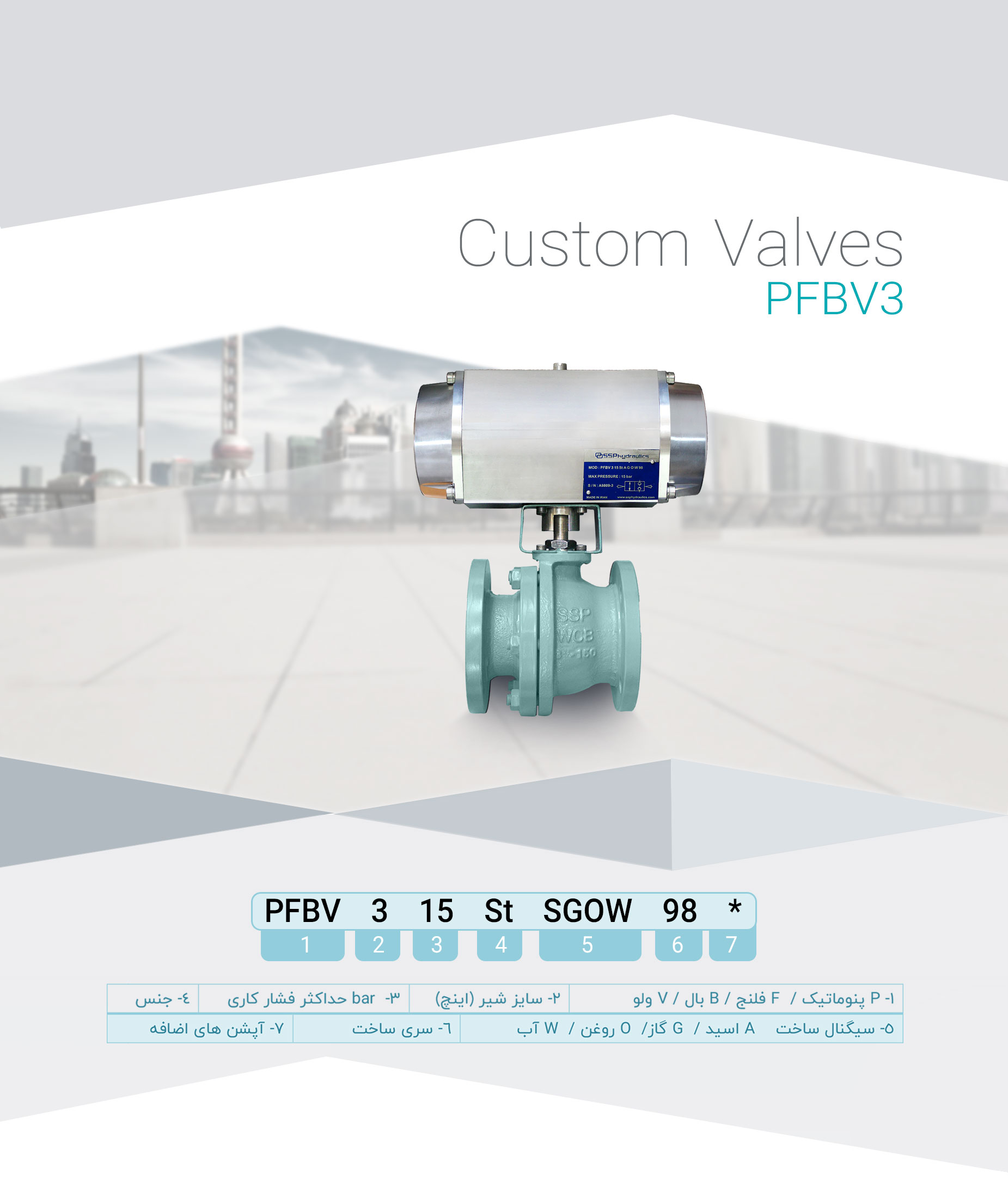 PFBV3-(1)