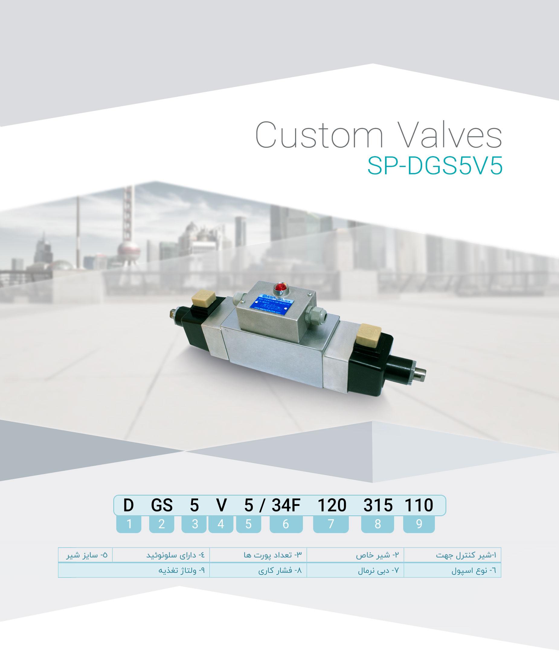 SP-DGS5V5(1)